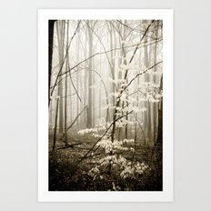 Apparition Art Print