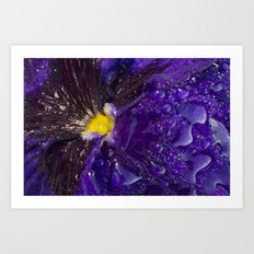 Dressed in gold and dew Art Print