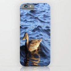 Quack iPhone 6 Slim Case