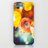 ranuculus iPhone 6 Slim Case