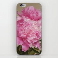 Pink Delight iPhone & iPod Skin