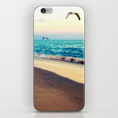 Lotsa More Gulls iPhone & iPod Skin