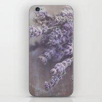 Lavande iPhone & iPod Skin