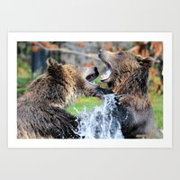 Sparring Grizzly Bears Art Print