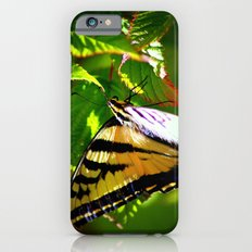 Butterfly- close and personal iPhone 6 Slim Case
