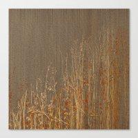 Dry flowers Canvas Print