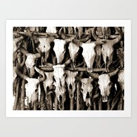 Mexican Cow Skulls Art Print