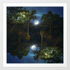 Moonset In Coniferous Fo… Art Print