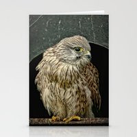 Young Kestrel In A Broke… Stationery Cards