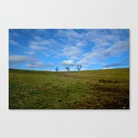 North Fields Canvas Print