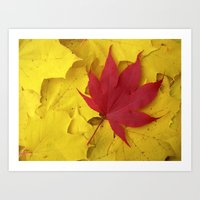 red leaf VII Art Print