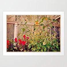 Sunflower Gardens Art Print