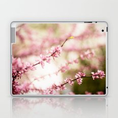 Beautiful Light Laptop & iPad Skin