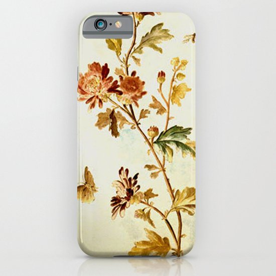 Chrysantheme iPhone & iPod Case