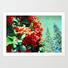 Brightening II Art Print