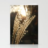 Grasses in the Sun Stationery Cards