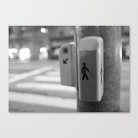 Paris crossing Canvas Print