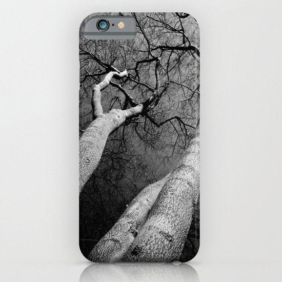 Monochrome Trees iPhone & iPod Case