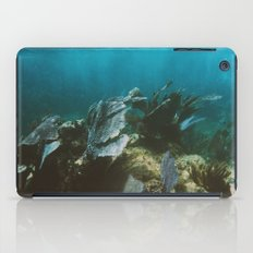 Mexican Caribbean Sealife iPad Case