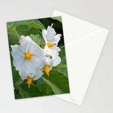 Potato Plant Flowers Stationery Cards