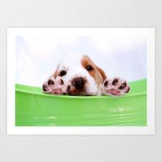 Puppy Art Print