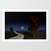 Night Sky In The Midwest… Art Print
