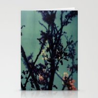 Polaroid Spring Stationery Cards