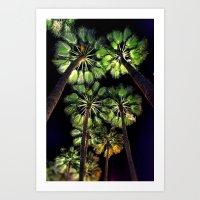 Palm Trees Night Walk Art Print