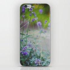 DELICATE. iPhone & iPod Skin