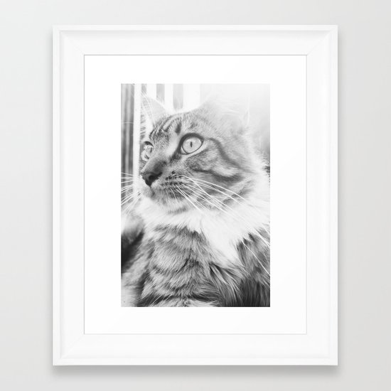 Chi Framed Art Print