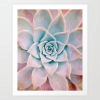 Pastel Succulent Art Print
