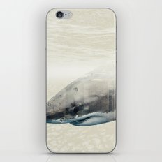 Sharks Of New York iPhone & iPod Skin