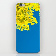 Nature Contrast iPhone & iPod Skin