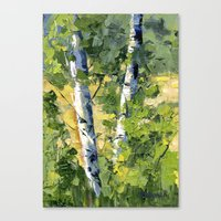 Aspens - Ready to Turn Yellow... Canvas Print