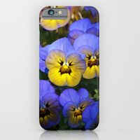 Violets iPhone 6 Slim Case
