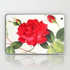 IX. Vintage Flowers Botanical Print by Pierre-Joseph Redouté - Red Rose Laptop & iPad Skin