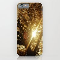 iPhone & iPod Case featuring Sunset Behind the Tree by Sara Miller