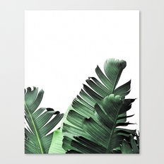 TROPICAL VOYAGE  Canvas Print