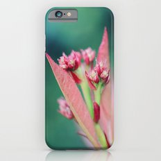Spring Blooms iPhone 6s Slim Case