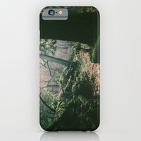 iPhone & iPod Case featuring ORCAS ISLAND FOREST by Kevin N. Murphy Photography