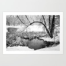 At Water's Edge Art Print