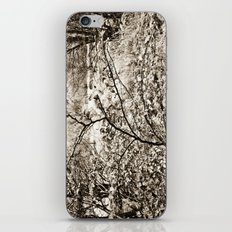 In nature. iPhone & iPod Skin