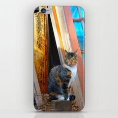 Chessie iPhone & iPod Skin