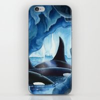 Killer Whales, Orcas iPhone & iPod Skin