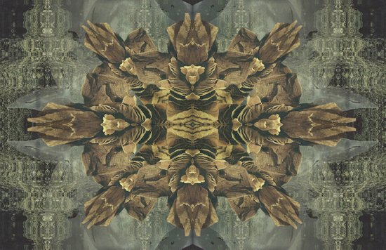 Stalagmite Dream Art Print