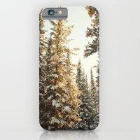 Snowy Pine Trees Glowing… iPhone 6 Slim Case