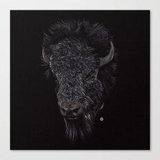 Bison / Buffalo Canvas Print