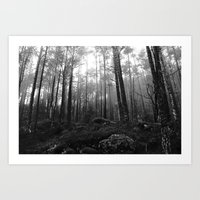 THE WOODS I Art Print