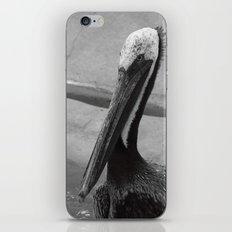 Pelican 1 iPhone & iPod Skin