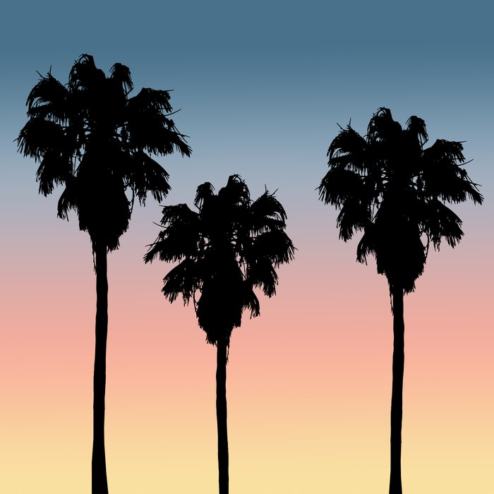 sunset palm trees silhouette art print